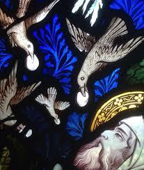 Elijah + ravens