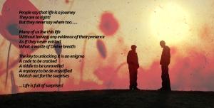 poppy-poem
